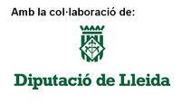 SUBVENCIÓ DEL PLA D'ARRENDAMENTS I SUBMINISTRAMENTS DE LA DIPUTACIÓ DE LLEIDA